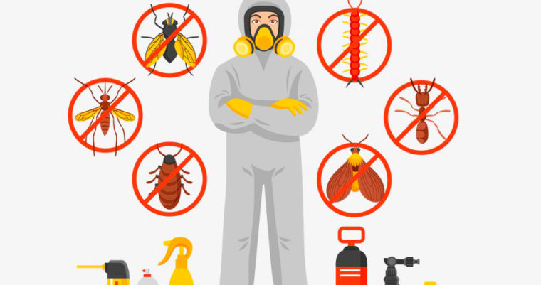 Calor favorecem o surgimento de animais peçonhentos como o escorpião.